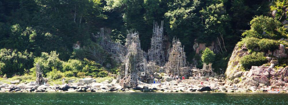 NIMIS: 75 tonn med rekved ble brukt til å bygge kunstverket «Nimis». Da myndigheten ville rive det, grunnla kunstneren sin egen stat.