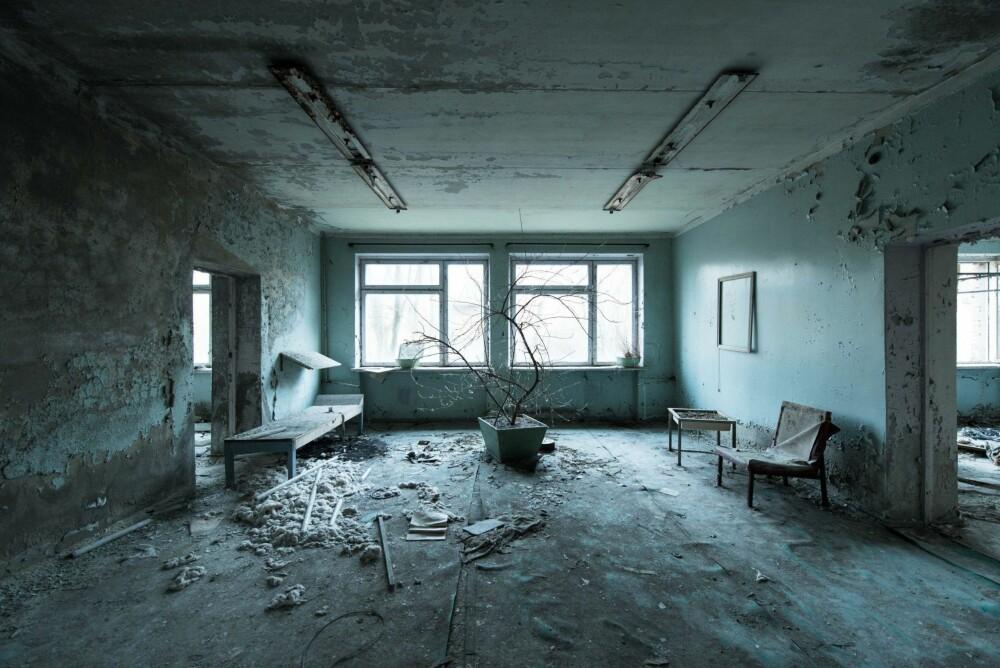 ETERNAL WAIT: Venterommet i restene etter sykehuset i Pripyat. Dette rommet fanget oppmerksomheten min med fargene og de råtnende plantene. Man får følelsen av at tiden har stått stille her.