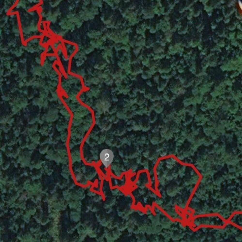 KUN GPS: I skog og med kun GPS har Garmin Fenix 5 store problemer med å registrere riktig posisjon. Her har jeg tilsynelatende svinset rundt som en hund langs stien.