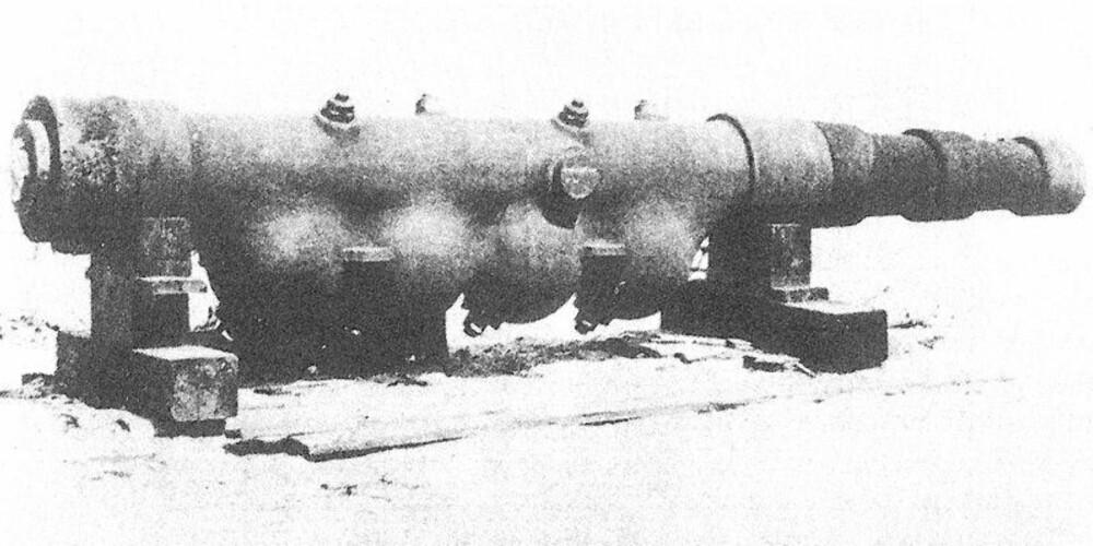 Prototyp på en fler-eksplosjonskanon fra 1883.
