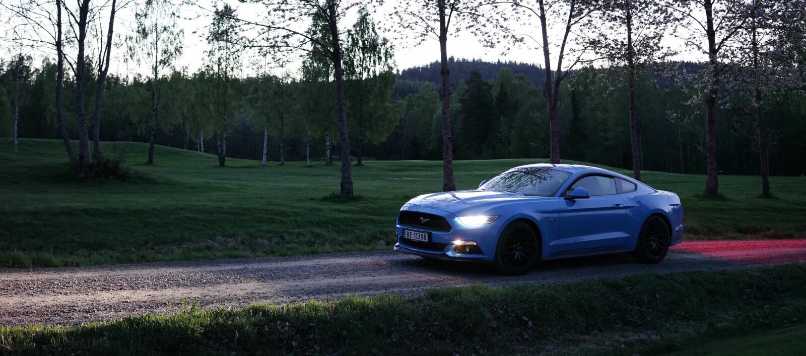 <b>UT PÅ BEITE: </b>Ford Mustang anno 2017. Ekte vare eller patetisk forsøk på å vegetere på gammel storhet