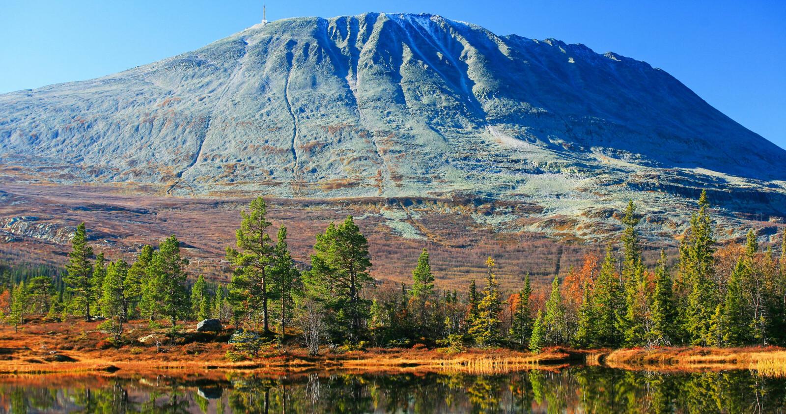 <b>GAUSTATOPPEN: </b>Fantastisk utsikt til Sør-Norge fra toppen.