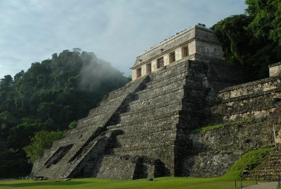 FORSVANT: Maya-kulturen som levde i Mellom-Amerika er av mange historikere og arkeologer ansett som en av de mest utviklede samfunn for sin tid. Nå kan mysteriet