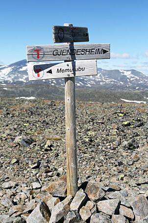 <b>MERKET:</b> Ruten over  Besseggen er meget godt  merket med Turistforeningens  røde t-er.