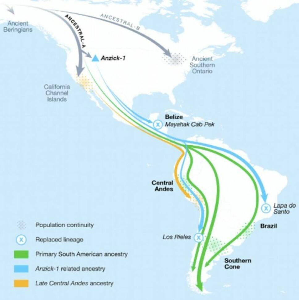 Det kan ha tatt så lite som tusen år før de første amerikanerne bosatte seg sør for Andesfjellene.