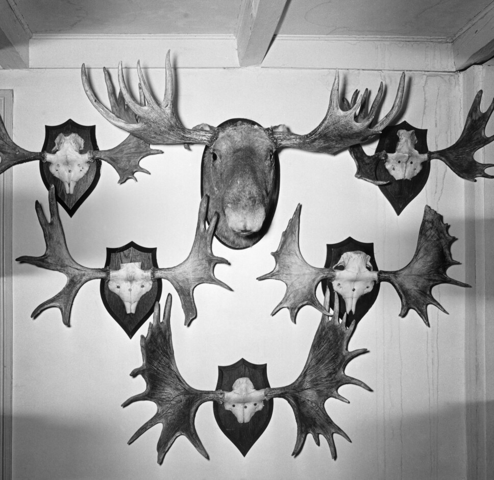 <b>EGGE GÅRD BRANT: </b>7. mars 1970 brant den gamle, herskapelige hovedbygningen på Egge, store deler av samlingen av jakttrofeer og kunst gikk tapt. (Foto: Magne Midttun/ Norsk Skogmuseum)