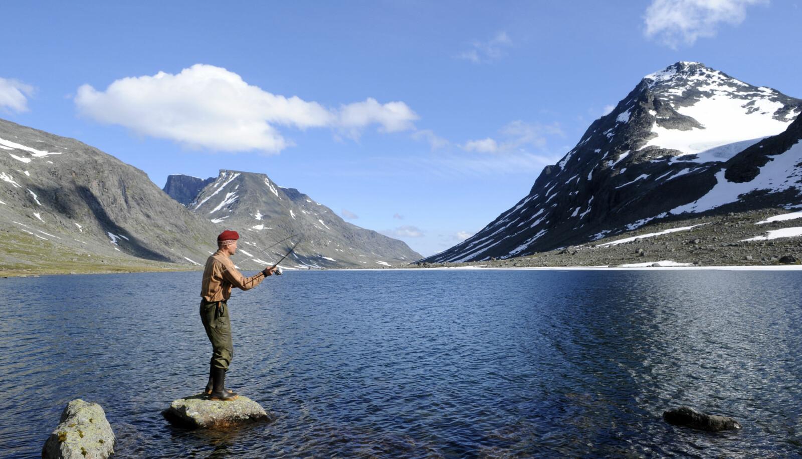 <b>FERIEFISKE:</b> For den som vil fiske ørret, er Norge et fantastisk ferieland! Den vakre naturen får du på kjøpet. Bildet er fra Jotunheimen.