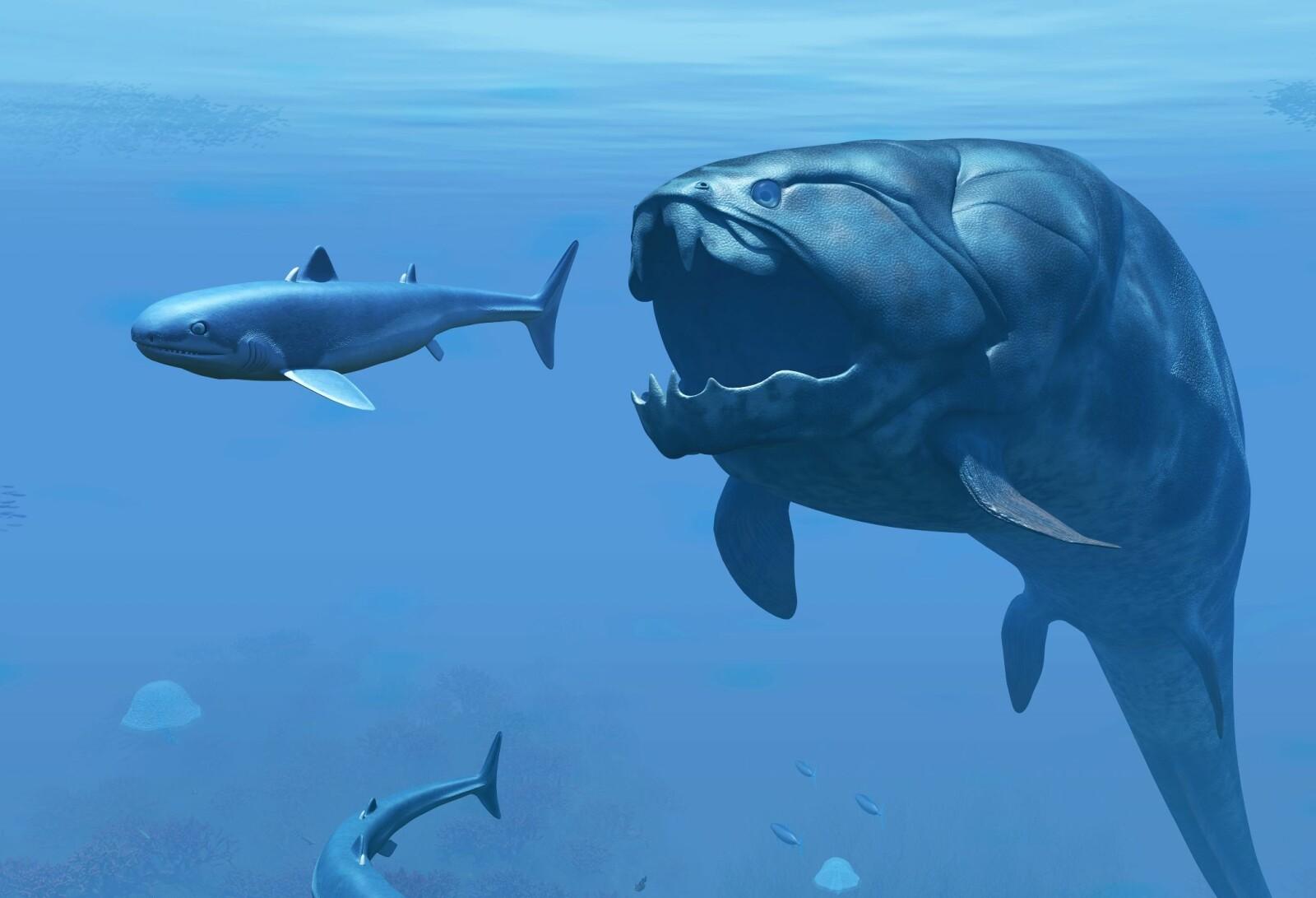 """<b>HAVETS SKREKK:</b> Den var seks meter lang og veide ett tonn. """"Dunk"""" regjerte i havet for mange hundrede millioner år siden."""