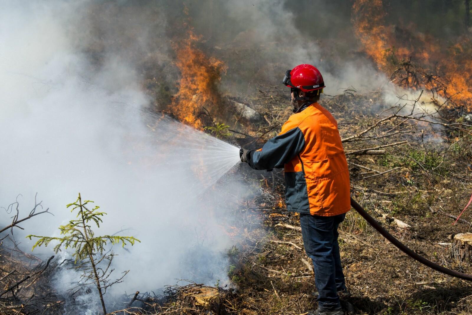 <b>INNSATS:</b> Skogbrannsesongen har vært krevende så langt i år. Her fra en brannøvelse ved Torpo i Hallingdal.