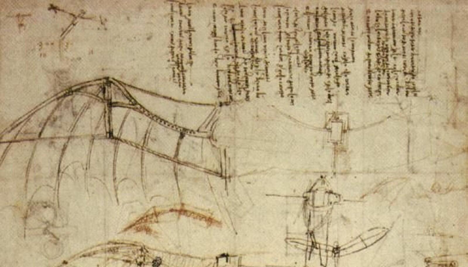 <b>FORUT SIN TID:</b> Leonardo da Vinci var forut sin tid og lot seg inspirere av naturen. NASA har sett til da Vinci for utviklingen av en vinge som bruker mindre energi og støyer mindre.