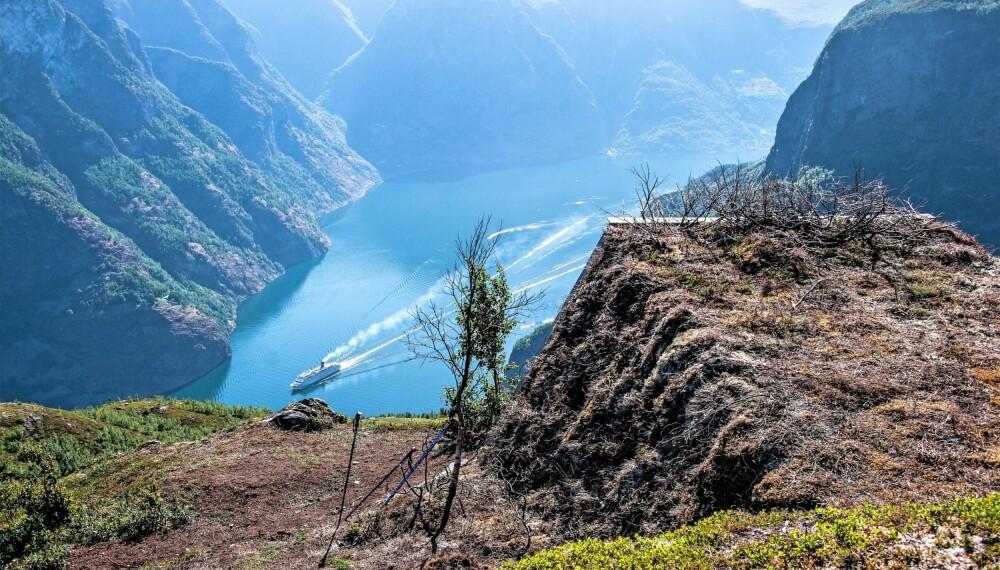 <b>FORMIDABEL: </b>Utsikt over Aurlandsfjorden. Oversiden av gapahuken går i ett med naturen.