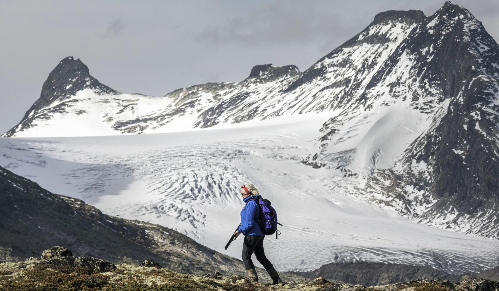 <b>FLOTT TERRENG:</b> Fantastiske omgivelser med Mjølkedalsbreen i bakgrunnen.