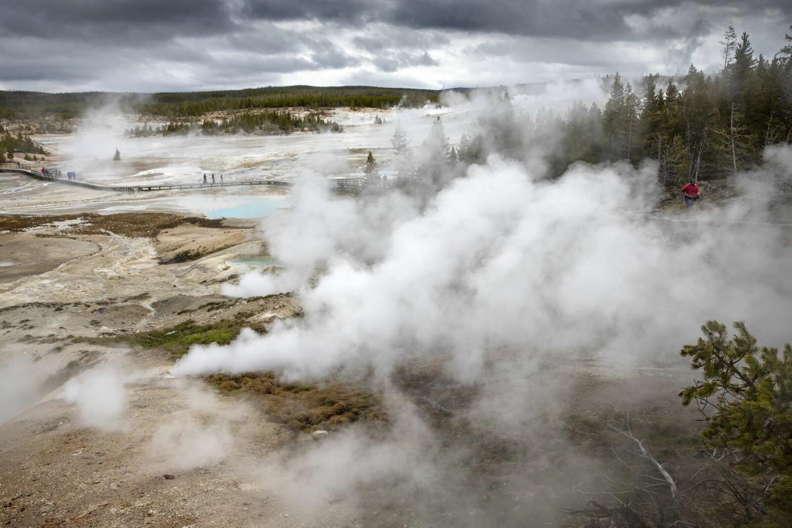 <b>SYDER:</b> I Norris Geyser Basin kryr det av turister. Plankestier har blitt snekret og alt er svært tilrettelagt for turistene. Men tåkebankene som tyter ut av hull i bakken, er ikke bare vanndamp. I 2004 ble det funnet fem døde bison her. Og de døde mest sannsynlig etter å ha innåndet giftige gasser.