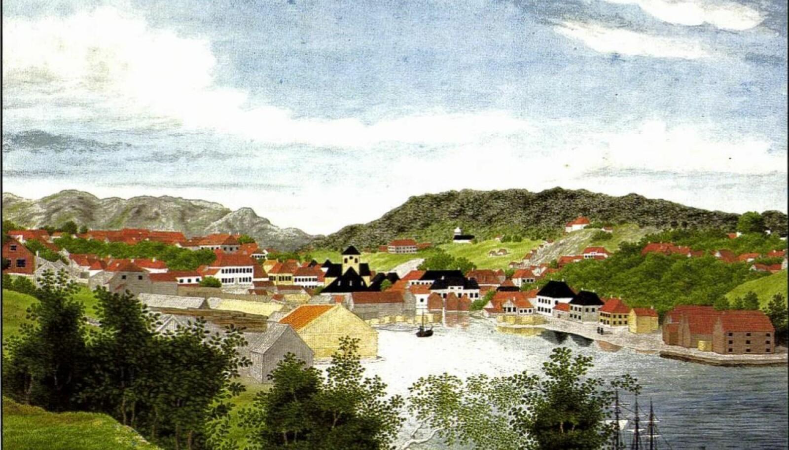SKIEN: På sin første norgesreise besøkte Catharine Hermine Kølle blant annet Skien og malte dette bildet.