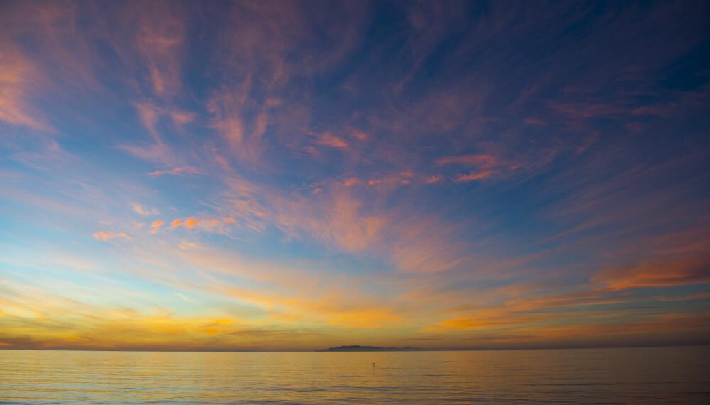 <b>STARTSKUDDET:</b> Livet startet i havet.